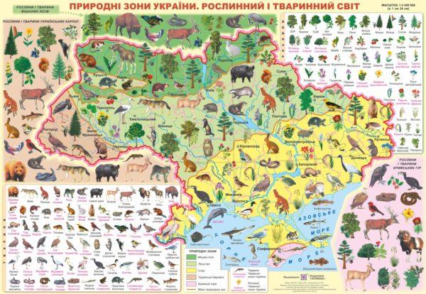 Плакат «Природні зони України. Рослинний і тваринний світ»